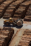 bulk;dock;docks;Dunedin;export;export-logs;exporting;exports;forestry;forestry-industry;front_end-laoder;front_end-loaders;import;importing;industrial;industry;loader;loaders;log;log-loader;log-loaders;log-stack;log-stacks;logging;logging-equipment;logs;lumber;N.Z.;New-Zealand;NZ;Otago;Otago-Harbour;Otago-port;pattern;patterns;pier;piers;pine;pine-tree;pine-trees;pines;pinus-radiata;port;Port-Chalmers;Port-of-Otago;Port-Otago;ports;Pt-Chalmers;quay;quays;S.I.;SI;South-Is;South-Is.;South-Island;Sth-Is;stockpile;stockpiles;timber;timber-industry;trade;tree;tree-trunk;tree-trunks;trees;waterside;wharf;wharfes;wharves;wood