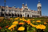 1906;architectural;architecture;bloom;blooming;blooms;building;buildings;clock;clock-tower;clock-towers;color;colorful;colors;colour;colourful;colours;council-gardens;Dunedin;Dunedin-Railway-Station;Flemish-Renaissance-style;floral;flower;flower-bed;flower-beds;flower-garden;flower-gardens;flowers;fresh;garden;gardens;George-A-Troup;Gingerbread-George;grow;growth;heritage;Historic;historic-building;historic-buildings;historical;historical-building;historical-buildings;history;N.Z.;New-Zealand;NZ;old;orange;Otago;rail-station;rail-stations;railroad;railroads;railway;railway-station;railway-stations;railways;renew;roof;rooves;S.I.;season;seasonal;seasons;SI;South-Is;South-Is.;South-Island;spring;Spring-Flowers;springtime;Sth-Is;tradition;traditional;train-station;train-stations;transport;transportation;yellow