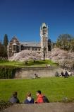 bloom;blooming;blooms;blossom;blossoming;blossoms;building;buildings;Clock-Tower;Clock-Towers;college;college-student;college-students;colleges;Dunedin;education;fresh;grow;growth;heritage;historic;historic-building;historic-buildings;historical;historical-building;historical-buildings;Historical-Registry-Building;history;N.Z.;New-Zealand;NZ;old;Otago;Otago-University;people;person;Registry-Building;renew;S.I.;season;seasonal;seasons;SI;South-Is;South-Is.;South-Island;spring;springtime;Sth-Is;student;students;teenager;teenagers;tertiary-education;tradition;traditional;uni;universities;university;University-of-Otago;university-student;university-students;young-people;young-person