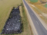 aerial;Aerial-drone;Aerial-drones;aerial-image;aerial-images;aerial-photo;aerial-photograph;aerial-photographs;aerial-photography;aerial-photos;aerial-view;aerial-views;aerials;agriculture;black;circle;circles;circular;Drone;Drones;Dunedin;emotely-operated-aircraft;farm;farming;farms;highway;highways;N.Z.;New-Zealand;NZ;Otago;Outram;Quadcopter;Quadcopters;remote-piloted-aircraft-systems;remotely-piloted-aircraft;remotely-piloted-aircrafts;river;rivers;ROA;road;roads;round;RPA;RPAS;S.I.;SI;silage;silage-heap;silage-pit;South-Is;South-Island;Sth-Is;Taieri-River;tire;tires;tyre;tyres;U.A.V.;UA;UAS;UAV;UAVs;Unmanned-aerial-vehicle;unmanned-aircraft;unpiloted-aerial-vehicle;unpiloted-aerial-vehicles;unpiloted-air-system;white