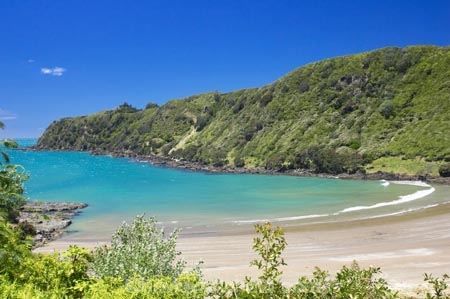 bay;bays;beach;beaches;coast;coastal;coastline;east-cape;east-coast;Eastland;hicks-bay;Hicks-Bay;new-zealand;north-is.;north-island;ocean;oceans;Onepoto-Bay;sand;sandy;sea;shore;shoreline;surf;wave;waves