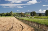 agricultural;agriculture;country;countryside;crop;crops;Eastland;farm;farming;farmland;farms;fence;fence-line;fence-lines;fence_line;fence_lines;fenceline;fencelines;fences;field;fields;Gisborne;horticulture;meadow;meadows;N.I.;N.Z.;New-Zealand;NI;North-Is;North-Is.;North-Island;NZ;paddock;paddocks;pasture;pastures;rural;stubble;Waipaoa