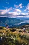 beautiful;beauty;endurance;fiordland-national-park;fit;fitness;great-walks;hike;hikes;hiking;huts;jog;jogging;Lake-Te-Anau;lakes;majestic;marathon;middle-earth;mountain;mountains;natural;nature;peak;peaks;race;racing;ridge;ridge-line;ridge_line;ridgeline;run;running;runs;scene;scenic;snow-line;snow_line;snowline;south-fiord;south-west;southland;summit;summits;te-wahipounamu-south_west-new-zealand-world-hertitage-area;the-bluffs;tracks;tramp;tramping;tramps;tussock;walk;walking;walks;water