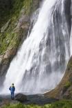 Bowen-Falls;bush;cascade;cascades;coast;coastal;coastline;color;colors;colour;colours;creek;creeks;falls;fiord;Fiordland-National-Park;fiords;fjord;fjords;forest;forests;green;Milford-Sound;moss;mountainside;mountainsides;native-bush;natural;nature;New-Zealand;people;person;scene;scenic;sound;sounds;South-Island;south-west;stream;streams;te-wahipounamu-south_west-new;tourist;tourists;trees;water;water-fall;water-falls;waterfall;waterfalls;wet;world-heritage-area
