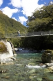 alive;beautiful;beauty;beech;bridge;bridges;brook;brooks;bubbling;bush;creek;creeks;dripping;fern;ferns;fiordland;fiordland-national-park;flora;foot-bridge;foot-bridges;forest;forestry;forests;green;hike;hiker;hikers;hikes;hiking;hollyford-river;hollyford-valley;lake-marian;lake-marion;lower-hollyford-valley;lush;majestic;middle-earth;moss;mosses;natural;nature;new-zealand;pedestrian-bridge;pedestrian-bridges;rain-forest;rain-forests;rain_forest;rain_forests;rainforest;rainsforests;river;rivers;rope-bridge;rope-bridges;scene;scenic;south-island;south-west;southland;stream;streams;suspension-bridge;suspension-bridges;swing-bridge;te-wahipounamu-south_west-new;track;tramp;tramper;trampers;tramping;tramps;trekker;trekkers;verdant;walk;walker;walkers;walking;walks;water;wire-bridge;wire-bridges;world-heritage-area;world-heritage-site