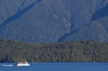 beautiful;beauty;Beech-Forest;boat;boats;bush;cruise;cruises;endemic;fiordland;Fiordland-N.P;fiordland-national-park;Fiordland-NP;forest;forests;green;holiday;holidaying;Holidays;lake;Lake-Te-Anau;lakes;launch;launches;n.z.;national-park;National-parks;native-bush;natural;nature;new-zealand;Nothofagus;nz;rain-forest;rain-forests;rain_forest;rain_forests;rainforest;rainforests;S.I.;scene;scenic;SI;South-Island;South-West-New-Zealand-World-Her;southern-beeches;Southland;te-anau;Te-Anau-Glow-Worm-Caves;te-wahipounamu;te-wahipounamu-south_west-new;tour-boat;tour-boats;tourism;tourist;tourist-boat;tourist-boats;tourists;travel;traveler;traveling;traveller;travelling;trees;Vacation;Vacationers;vacationing;Vacations;water;world-heirtage-site;world-heritage-area