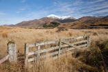 agricultural;agriculture;country;countryside;farm;farming;farmland;farms;field;fields;gate;gates;gateway;gateways;meadow;meadows;Mossburn;Mount-Hamilton;Mt-Hamilton;Mt.-Hamilton;N.Z.;New-Zealand;NZ;paddock;paddocks;pasture;pastures;rural;S.I.;SI;South-Is.;South-Island;Southland;Takitimu-Mountains