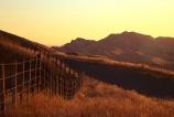 farmland;grass;tussock;hill;hills;light;golden;gold;sunset;evening-light;twilight;range;peaks;fenceline
