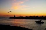 bird;birds;boat;boats;break-of-day;coast;coastal;coastline;coastlines;coasts;cruise;cruises;dawn;dawning;daybreak;first-light;fishing-boat;fishing-boats;harbor;harbors;harbour;Harbour-Entrance;harbours;Hawke-Bay;Hawkes-Bay;Inner-Harbour;launch;launches;morning;N.I.;N.Z.;Napier;New-Zealand;NI;North-Island;NZ;ocean;oceans;Perfume-Point;sea;seagull;seagulls;shore;shoreline;shorelines;shores;sunrise;sunrises;sunup;twilight;water