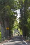 bridge;bridges;driving;Hawkes-Bay;Mangaone-River;N.I.;N.Z.;New-Zealand;NI;North-Island;NZ;one-lane-bridge;one-lane-bridges;Rissington;road;roads;single-lane-bridge;single-lane-bridges;transport;transportation;travel;traveling;travelling