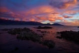 alpenglo;alpenglow;alpine;alpinglo;alpinglow;break-of-day;calm;cloud;clouds;coast;coastal;coastline;coastlines;coasts;color;colors;colour;colours;dawn;dawning;daybreak;first-light;Kaikoura;Kaikoura-Coast;Kaikoura-Range;Kaikoura-Ranges;Marlborough;morning;mountain;mountainous;mountains;mt;New-Zealand;NZ;ocean;oceans;orange;Pacific-Ocean;pink;placid;quiet;reflected;reflection;reflections;S.I.;sea;seas;Seaward-Kaikoura-Range;Seaward-Kaikoura-Ranges;serene;shore;shoreline;shorelines;shores;smooth;snow;South-Is;South-Island;Sth-Is;still;sunrise;sunrises;sunup;tranquil;twilight;water