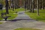 Canterbury;Hamner;Hamner-Springs;Hanmer;Hanmer-Springs;Hurunui-District;N.Z.;New-Zealand;NZ;park;parks;path;paths;pathway;pathways;reserve;reserves;S.I.;SI;South-Is;South-Is.;South-Island;Sth-Is;tree;trees