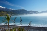 Kaikoura & North Canterbury