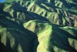 farm;rural;grass;agriculture;farming;farms;pasture;paddock;paddocks;field;fields;meadow;meadows;pastures;north-island;golden;trees;tree;farmland;lush;green;verdant;fertile;hill;hills;hilly;steep;kapiti;folded;valley;valleys;ridge;ridges;pukerua-bay;aerial;aerials