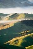 agricultural;agriculture;cloud;cloudy;country;countryside;early-morning;farm;farming;farmland;farms;field;fields;fog;foggy;Hikawera;Hinakura;Martinborough;meadow;meadows;mist;misty;N.I.;N.Z.;New-Zealand;NI;North-Island;NZ;paddock;paddocks;pasture;pastures;rural;Wairarapa