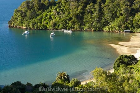 bay;bays;Becks-Bay;coast;coastal;coastline;Grove-Arm;Marlborough;Marlborough-Sounds;moor;mooring;moorings;New-Zealand;Queen-Charlotte-Sound;South-Island;Whenuanui-Bay
