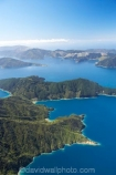 aerial;aerials;bay;bay-of-many-coves;bays;beautiful;beauty;bush;clay-point;coast;coastal;coastline;coastlines;coasts;Cockle-Cove;cove;coves;endemic;forest;forests;green;inlet;inlets;marlborough;Marlborough-Sounds;Milton-Bay;miritu-bay;native;native-bush;natives;natural;nature;new-zealand;nz;Pope-Bay;queen-charlotte-sound;scene;scenic;sea;shore;shoreline;shorelines;shores;sound;sounds;south-island;tree;trees;water;woods