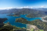 aerial;aerials;bay;bays;beautiful;beauty;bush;coast;coastal;coastline;coastlines;coasts;cove;coves;endemic;forest;forests;green;inlet;inlets;marlborough;Marlborough-Sounds;native;native-bush;natives;natural;nature;new-zealand;ngawhakawhiti-bay;nz;penzance-bay;scene;scenic;sea;shore;shoreline;shorelines;shores;sound;sounds;south-island;te-mako-bay;tennyson-inlet;tree;trees;tuna-bay;water;woods;worlds-end;worlds-end