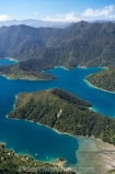 aerial;aerials;bay;bays;beautiful;beauty;bush;coast;coastal;coastline;coastlines;coasts;cove;coves;endemic;forest;forests;green;inlet;inlets;marlborough;Marlborough-Sounds;native;native-bush;natives;natural;nature;new-zealand;ngawhakawhiti-bay;nz;scene;scenic;sea;shore;shoreline;shorelines;shores;sound;sounds;south-island;te-mako-bay;tennyson-inlet;tree;trees;tuna-bay;water;woods;worlds-end;worlds-end