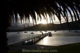 boat;boats;calm;calmness;fishing-boats;harbor;harbors;harbour;harbours;hull;hulls;jetties;jetty;launch;launches;marina;marinas;Marlborough;Marlborough-Sounds;mast;masts;New-Zealand;palm;palm-tree;palm-trees;palms;peaceful;peacefulness;phoenix-palm;phoenix-palm-tree;phoenix-palm-trees;phoenix-palms;Picton;pier;piers;port;ports;Queen-Charlotte-Sound;reflection;reflections;sail;sailing;silhouette;silhouettes;South-Island;still;stillness;tranquil;tranquility;Waikawa;Waikawa-Bay;waterside;wharf;wharfes;wharves;yacht;yachts