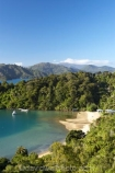 bay;bays;Becks-Bay;coast;coastal;coastline;Grove-Arm;Marlborough;Marlborough-Sounds;New-Zealand;Queen-Charlotte-Sound;South-Island;Whenuanui-Bay