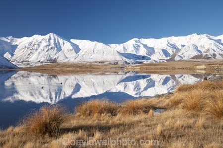 calm;Canterbury;Canterbury-Foothills;cold;Hakatere-Conservation-Park;lake;Lake-Heron;lakes;Mid-Canterbury;Mount-Catherine;Mt-Catherine;Mt.-Catherine;N.Z.;New-Zealand;NZ;placid;quiet;reflection;reflections;S.I.;season;seasonal;seasons;serene;SI;smooth;snow;snowy;South-Is;South-Island;still;Taylor-Range;tranquil;tussock;tussocks;water;white;winter;wintery