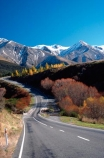 alpine;arthur-pass;arthurs-pass;color;colors;colour;colours;mountain;mountains;orange;red;roads;snow;transport;travel;tree;trees;yellow