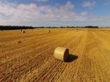 aerial;Aerial-drone;Aerial-drones;aerial-image;aerial-images;aerial-photo;aerial-photograph;aerial-photographs;aerial-photography;aerial-photos;aerial-view;aerial-views;aerials;agricultural;agriculture;Canterbury;country;countryside;crop;crops;Drone;Drones;emotely-operated-aircraft;farm;farming;farmland;farms;field;fields;hay;hay-bale;hay-bales;hay-paddock;hay-paddocks;horticulture;meadow;meadows;N.Z.;New-Zealand;NZ;Otago;paddock;paddocks;pasture;pastures;Quadcopter;Quadcopters;remote-piloted-aircraft-systems;remotely-piloted-aircraft;remotely-piloted-aircrafts;ROA;RPA;RPAS;rural;S.I.;SI;South-Canterbury;South-Is;South-Island;Sth-Is;U.A.V.;UA;UAS;UAV;UAVs;Unmanned-aerial-vehicle;unmanned-aircraft;unpiloted-aerial-vehicle;unpiloted-aerial-vehicles;unpiloted-air-system;Waimate;Willowbridge