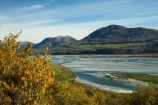 Aotearoa;blue-water;braided-channels;braided-river;braided-rivers;braided-stream;braided-streams;Canterbury;flower;flowers;kowhai;kowhai-flower;kowhai-flowers;Mid-Canterbury;N.Z.;New-Zealand;NZ;Rakaia-River;Rakaia-Valley;river;rivers;season;seasonal;seasons;South-Is;South-Island;spring;spring-time;spring_time;springtime;Sth-Is;stream;streams;yellow