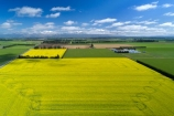aerial;Aerial-drone;Aerial-drones;aerial-image;aerial-images;aerial-photo;aerial-photograph;aerial-photographs;aerial-photography;aerial-photos;aerial-view;aerial-views;aerials;agricultural;agriculture;canolla;canolla-field;canolla-fields;Canterbury;country;countryside;crop;crops;Drone;Drones;farm;farming;farmland;farms;field;fields;flower;flowers;horticulture;meadow;meadows;Methven;Mid-Canterbury;Mount-Hutt;mountain;mountains;Mt-Hutt;N.Z.;New-Zealand;NZ;paddock;paddocks;pasture;pastures;Quadcopter-aerial;Quadcopters-aerials;rapeseed;rapeseed-field;rural;S.I.;season;seasonal;seasons;SI;South-Is;South-Island;southern-alps;spring;spring-time;spring_time;springtime;Sth-Is;tire-tracks;tractor-tracks;tyre-tracks;U.A.V.-aerial;UAV-aerials;wheel-tracks;yellow;yellow-flower;yellow-flowers
