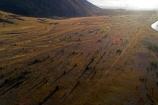 aerial;Aerial-drone;Aerial-drones;aerial-image;aerial-images;aerial-photo;aerial-photograph;aerial-photographs;aerial-photography;aerial-photos;aerial-view;aerial-views;aerials;Canterbury;Drone;Drones;early-sun;low-sun;Mackenzie-Country;Mackenzie-Region;N.Z.;New-Zealand;NZ;Ohau;pest;pine;pine-tree;pine-trees;pines;Quadcopter-aerial;Quadcopters-aerials;S.I.;SI;South-Canterbury;South-Is;South-Island;spread-of-wilding-pines;Sth-Is;Twizel;U.A.V.-aerial;UAV-aerials;weed;wilding;wilding-pines
