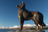 sky;lake;lakes;mountain;mountains;mckenzie;tekapo;lake-tekapo;south-island;new-zealand;fine;snow;mackenzie;mackenzie-country;two-thumbs-range;sheep-dog;sheepdog;statue;collie;colliedog;collie-dog;dog;collie-cross;colliecross;collie_cross;sheep-dogs;sheepdogs;statues;collies;colliedogs;collie-dogs;dogs;collie-crosses;colliecrosses;collie_crosses;sculpture;sculptures
