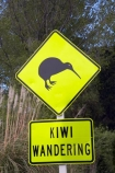 B.O.P.;Bay-of-Plenty;BOP;dayglo;Kiwi-Sign;Kiwi-Signs;Kiwi-Wandering;Kiwi-Warning-Sign;Kiwi-Warning-Signs;N.I.;N.Z.;New-Zealand;NI;North-Is;North-Island;NZ;road-sign;road-signs;Wandering-Kiwi;yellow
