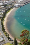 Bay-of-Plenty;beach;beaches;coast;coastal;coastline;flower;flowers;metrosideros-excelsa;Mount-Maunganui;Mt-Maunganui;Mt.-Maunganui;N.I.;N.Z.;New-Zealand;NI;North-Is;North-Is.;North-Island;NZ;Pilot-Bay;plant;plants;pohutakawa;Pohutakawa-Tree;pohutakawas;pohutukawa;pohutukawa-flower;pohutukawa-flowers;pohutukawa-tree;pohutukawa-trees;pohutukawas;sand;sandy;shore;shoreline;Tauranga;tree;trees