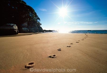 beach;beaches;footprint;footprints;foot-print;foot-prints;sun;sunny;dawn;early-morning;track;tracks;mosquito-bay;abel-tasman;abel-tasman-national-park;national-park;national-parks;direction;path;pathway;sand;sandy