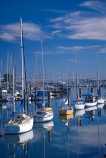 boat;boats;calm;calmness;fishing-boats;harbor;harbors;harbour;harbours;hull;hulls;launch;launches;marina;marinas;mast;masts;nelson;nelson-haven;peaceful;peacefulness;port;ports;reflection;reflections;sail;sailing;south-island;still;stillness;tranquil;tranquility;yacht;yachts