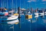 yacht;yachts;boat;boats;reflection;reflections;mast;masts;marinas;marina;calm;calmness;still;stillness;peaceful;peacefulness;tranquil;tranquility;sail;sailing;port;ports;launch;launches;fishing-boats;harbour;harbours;harbor;harbors;hull;hulls;nelson;south-island;nelson-haven
