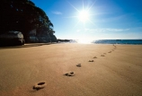 beach;beaches;footprint;footprints;foot-print;foot-prints;sun;sunny;dawn;early-morning;track;tracks;mosquito-bay;abel-tasman;abel-tasman-national-park;national-park;national-parks;direction;path;pathway;sand;sandy