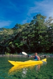 water;bush;forest;forests;tranquil;tranquility;peaceful;peace;peacefulness;colour;colours;color;colors;yellow;blue;green;aqua;paddle;paddler;paddlers;paddles;paddling;clear;see_through;pure;ferns;native;fern;kayak;kayaks;kayaker;kayakers;kayaking;lake;lakes;rotoiti;nelson-lakes-national-park;nelson-lakes;national-park;national-parks