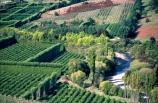 Kiwifruit-Farms;Riwaka-Valley;Motueka;Kiwi_fruit;kiwi-fruit;farm;farms;rural;agriculture;horticulture;crop;crops;fruit;fruits;grow;lush;fertile;river;rivers