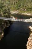1887;Aorere-River;Aorere-Valley;bridge;bridges;families;family;foot-bridge;foot-bridges;footbridge;footbridges;Golden-Bay;hiking-track;hiking-tracks;N.Z.;Nelson-Region;New-Zealand;NZ;pedestrian-bridge;pedestrian-bridges;people;person;S.I.;Salisbury-Footbridge;SI;South-Is.;South-Island;suspension-bridge;suspension-bridges;swing-bridge;swing-bridges;track;tracks;walker;walkers;walking-track;walking-tracks;wire-bridge;wire-bridges