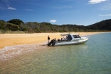 Abel-Tasman-Aqua-Taxi;Abel-Tasman-Aqua-Taxis;Abel-Tasman-Coast-Track;Abel-Tasman-Coastal-Track;Abel-Tasman-N.P.;Abel-Tasman-National-Park;Abel-Tasman-NP;Abel-Tasman-Water-Taxi;Abel-Tasman-Water-Taxis;beach;beaches;boat;boats;coast;coastal;coastline;golden-beach;golden-beaches;Golden-Sand;N.Z.;national-park;national-parks;Nelson-Region;New-Zealand;NZ;ocean;oceans;S.I.;sand;sandy;sea;seas;shore;shoreline;SI;South-Is.;South-Island;Totaranui;tour-boat;tour-boats;tourism;tourist;tourist-boat;tourist-boats;water;water-taxi;water-taxis