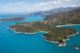 Abel-Tasman-Coast-Track;Abel-Tasman-Coastal-Track;Abel-Tasman-N.P.;Abel-Tasman-National-Park;Abel-Tasman-NP;Adele-Is;Adele-Is.;Adele-Island;aerial;aerial-photo;aerial-photograph;aerial-photographs;aerial-photography;aerial-photos;aerial-view;aerial-views;aerials;coast;coastal;coastline;coastlines;coasts;Great-Walk;Great-Walks;hiking-track;hiking-tracks;N.Z.;national-park;national-parks;Nelson-Region;New-Zealand;NZ;ocean;Pitt-Head;S.I.;sea;shore;shoreline;shorelines;shores;SI;South-Is.;South-Island;Tasman-Bay;Te-Pukatea-Bay;The-Anchorage;Torrent-Bay;tramping-track;tramping-tracks;treking-track;treking-tracks;trekking-track;trekking-tracks;walking-track;walking-tracks;water