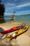 Abel-Tasman;Abel-Tasman-N.P.;Abel-Tasman-National-Park;Abel-Tasman-NP;adventure;adventure-tourism;boat;boats;canoe;canoeing;canoes;coast;coastal;coastline;coastlines;coasts;hot;kayak;kayaking;kayaks;N.Z.;national-park;national-parks;Nelson-Region;New-Zealand;NZ;ocean;oceans;red-kayak;red-kayaks;rock;S.I.;sea;sea-kayak;sea-kayaking;sea-kayaks;seas;shore;shoreline;shorelines;shores;South-Is;South-Island;Sth-Is;summer;swimmer;swimmers;Tasman-Bay;Tasman-District;teenager;teenagers;Tinline-Bay;tourism;tree;tree-on-rock;vacation;vacations;water;yellow-kayak;yellow-kayaks