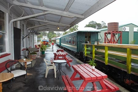 Bay-of-Is;Bay-of-Islands;Bay-of-Islands-Vintage-Railway;carriage;carriages;freight;Kawakawa;Kawakawa-Railway-Station;Kawakawa-Station;N.I.;N.Z.;New-Zealand;NI;North-Is;North-Is.;North-Island;Northland;NZ;passenger-train;passenger-trains;platform;platforms;rail;rail-station;rail-stations;railroad;railroads;rails;railway;railway-station;railway-stations;railways;tourist-attraction;tourist-attractions;tourist-train;tourist-trains;track;tracks;train;train-station;train-stations;trains;transport;transportation;vintage-train;vintage-trains