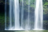 bay-of-islands;cascade;cascades;creek;creeks;falls;Kerikeri;natural;nature;new-zealand;north-is.;north-island;Northland;Rainbow-Falls;river;rivers;scene;scenic;stream;streams;water;water-fall;water-falls;waterfall;waterfalls;wet