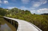 Auckland-Region;boardwalk;boardwalks;bridge;bridges;estuaries;estuary;foot-bridge;foot-bridges;footbridge;footbridges;hiking-track;hiking-tracks;inlet;inlets;lagoon;lagoons;mangrove;mangrove-boardwalk;mangrove-boardwalks;mangrove-swamp;mangrove-swamps;mangroves;N.I.;N.Z.;New-Zealand;NI;North-Is;North-Is.;North-Island;Northland;NZ;pedestrian-bridge;pedestrian-bridges;Rodney-District;Sandspit;tidal;tide;tides;track;tracks;walking-track;walking-tracks;Warkworth;water