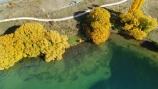 A2O;aerial;Aerial-drone;Aerial-drones;aerial-image;aerial-images;aerial-photo;aerial-photograph;aerial-photographs;aerial-photography;aerial-photos;aerial-view;aerial-views;aerials;Alps-2-Ocean;Alps-2-Ocean-cycle-trail;Alps-to-ocean;Alps-to-ocean-cycle-trail;autuminal;autumn;autumn-colour;autumn-colours;autumnal;Benmore;bike-track;bike-tracks;bike-trail;bike-trails;color;colors;colour;colours;cycle-track;cycle-tracks;cycle-trail;cycle-trails;cycleway;cycleways;deciduous;Drone;Drones;fall;gold;golden;lake;Lake-Benmore;lakes;N.Z.;New-Zealand;North-Otago;NZ;Otago;Quadcopter-aerial;Quadcopters-aerials;S.I.;season;seasonal;seasons;SI;South-Is;South-Island;Sth-Is;Sth-Is.;tree;trees;U.A.V.-aerial;UAV-aerials;Waitaki;Waitaki-District;Waitaki-Region;Waitaki-Valley;willow;willow-tree;willow-trees