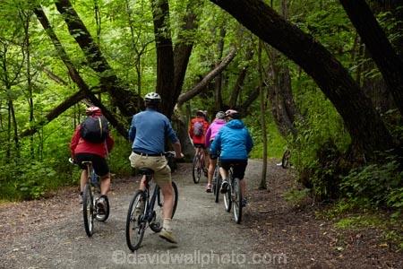 Arrow-River-Bridges-Ride;Arrowtown;Arrowtown-cycle-track;Arrowtown-cycle-trail;bicycle;bicycles;bike;bike-track;bike-tracks;bike-trail;bike-trails;bikes;biking;cycle;cycle-track;cycle-tracks;cycle-trail;cycle-trails;cycler;cyclers;cycles;cycling;cyclist;cyclists;green;leisure;mountain-bike;mountain-biker;mountain-bikers;mountain-bikes;mtn-bike;mtn-biker;mtn-bikers;mtn-bikes;N.Z.;New-Zealand;NZ;Otago;people;person;push-bike;push-bikes;push_bike;push_bikes;pushbike;pushbikes;Queenstown-Bike-Trail;Queenstown-Cycle-Trail;Queenstown-Trail;Queenstown-Trails;recreation;S.I.;SI;South-Is;South-Island;Southern-Lakes;Southern-Lakes-District;Southern-Lakes-Region;Sth-Is;tourism;tourist;tourists;tree;trees;willow-tree;willow-trees