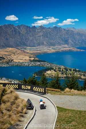 adventure;adventure-tourism;alp;alpine;alps;attraction;curve;curves;fast;high-altitude;holiday;holidays;lake;Lake-Wakatipu;lakes;luge;luges;luging;mountain;N.Z.;new-zealand;NZ;Otago;outdoor;outdoors;outside;peak;peaks;people;person;Queenstown;quick;recreation;Remarkables;S.I.;SI;Skyline;Skyline-Complex;Skyline-Luge;South-Is;South-Is.;south-island;Southern-Lakes;Southern-Lakes-District;Southern-Lakes-Region;speed;Sth-Is;The-Remarkables;The-Skyline;tourism;tourist;tourists;track;tracks;trolley;trolleys;turn;turns;vacation;vacations